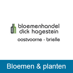 Bloemenhandel Dick Hagestein Brielle