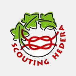 Scouting Hedera