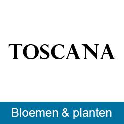 Bloemsierkunst Toscana
