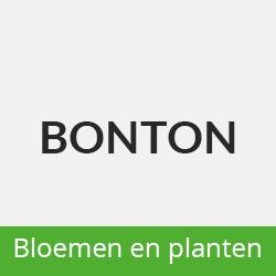Bonton Bloemsierkunst